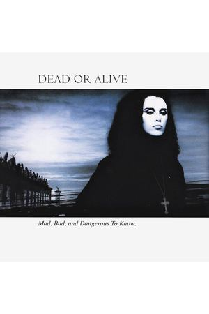 Dead Or Alive ‎- Mad, Bad And Dangerous To Know