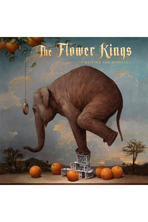 Виниловая пластинка Warner Music The Flower Kings:Waiting For Miracles